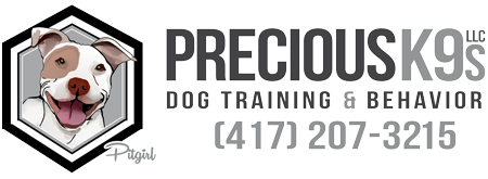 Precious K9s Dog Training & Dog Coaching in Springfield, MO